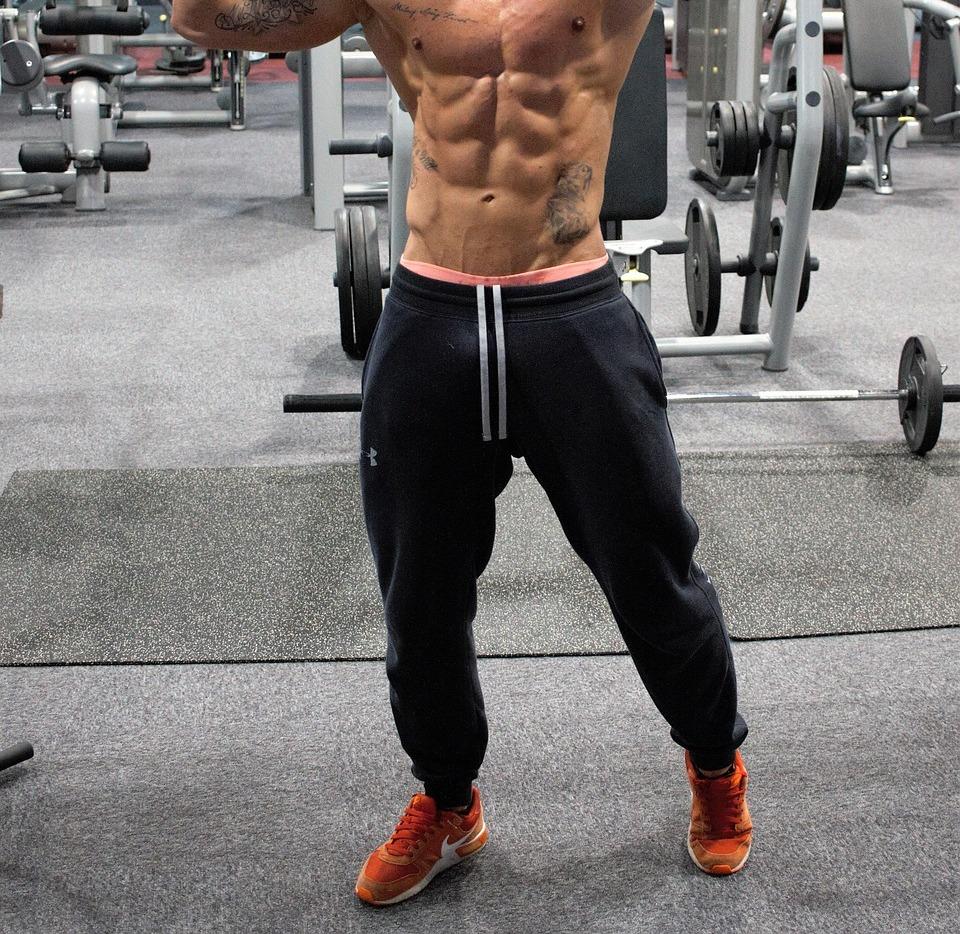 Quels muscles travaillent avec le gainage ?